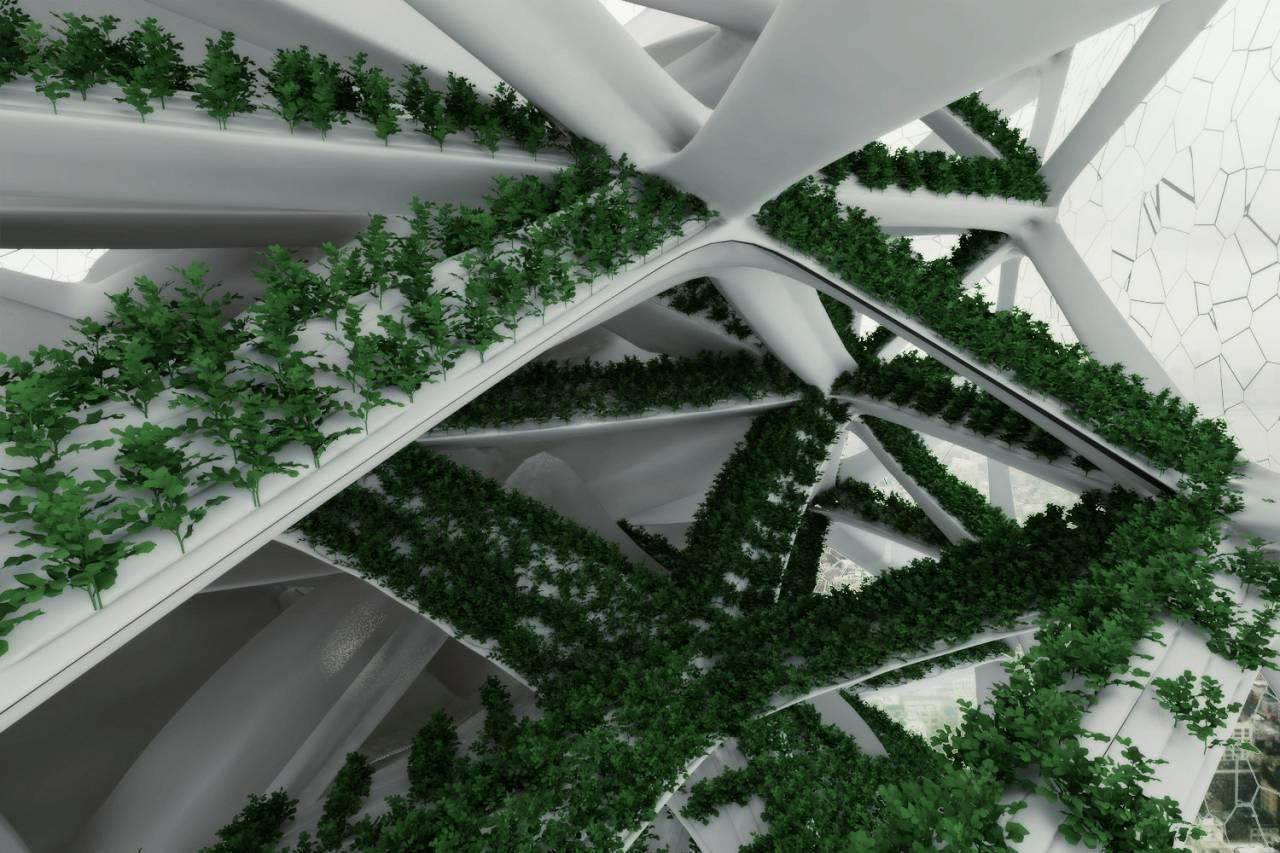 גידול אנכי לגובה של ירוקים